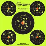 12 inch 5 targets new fl shot 300